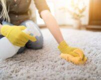 برای از بین بردن بوی بد فرش چه باید کرد