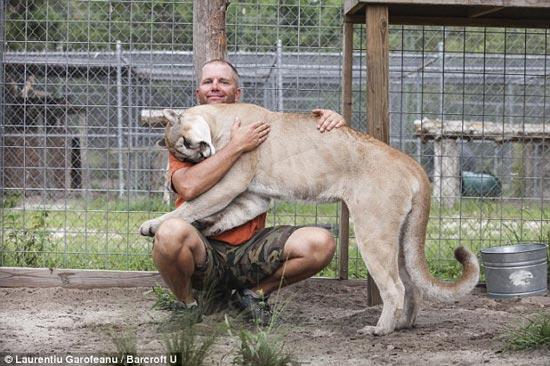 این مرد با حیوانات وحشی رابطه جنسی برقرار می کند + تصاویر