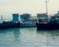 جزیره آشوراده + تصاویر