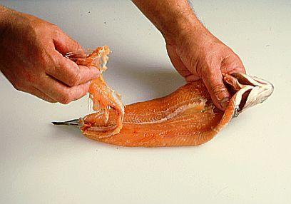 آموزش تصویری کشیدن سیخ ماهی قبل از طبخ