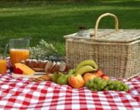 غذاهای مناسب برای گردش و پیک نیک