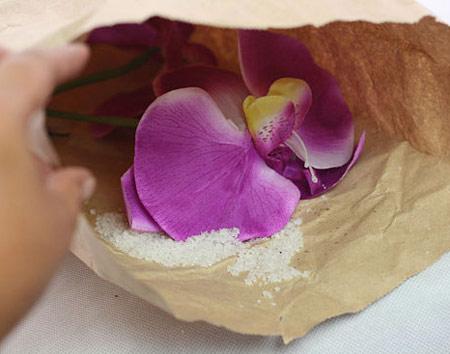 آموزش تصویری تمیز کردن و شستن گل های مصنوعی
