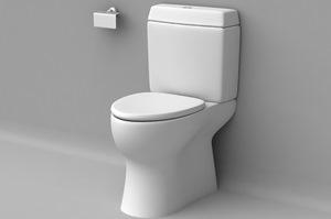 نکاتی مهم در هنگام استفاده از توالت ایرانی و فرنگی