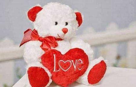 نحوه شستن خرس عروسکی عکس های خرس عروسکی عاشقانه و احساسی