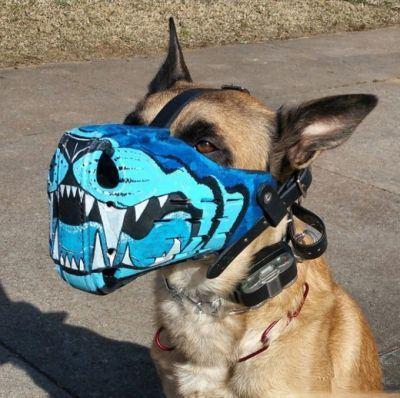 مدل های جدید پوزه بند سگ