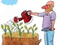 کاریکاتور روز درختکاری جدید – جالب – باحال – طنز و خنده دار
