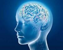 تغذیه مناسب برای تقویت حافظه دانش آموزان