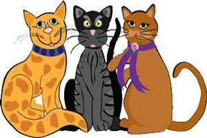 قصه کودکانه و زیبای گربههای نادان