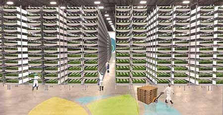 بزرگترین مزرعه عمودی جهان در نیوجرسی (عکس)