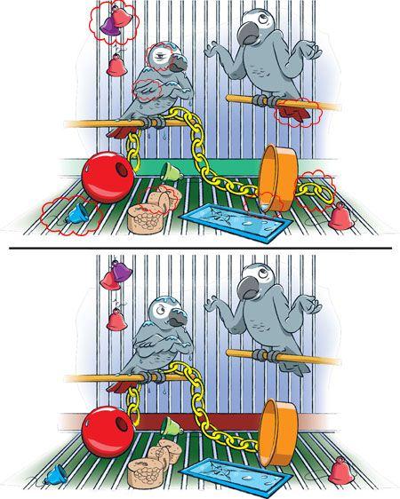 در این تصاویر تفاوت ها را پیدا کنید (تست هوش)