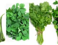 مقدار لازم سبزی های مختلف برای قرمه سبزی