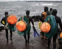 عکس های دیدنی غواصی زنان و دختران در دریا