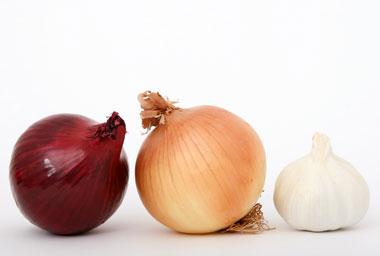 کنترل قند خون با گیاهان ضد دیابت
