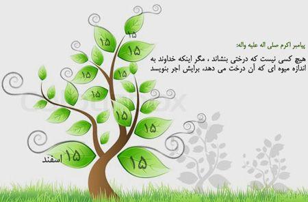 جدیدترین پوسترهای روز درختکاری