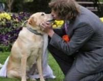 عکس های ازدواج و رابطه جنسی پسر 20 ساله با سگ ماده