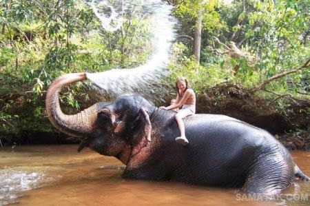 عکس های شگفت انگیز رابطه انسان با حیوان