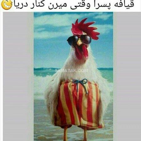 عکس نوشته خنده دار | عکس جدید طنز توپ