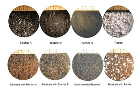 خاک چیست | آشنایی با انواع خاک و مواد تشکیل دهنده خاک