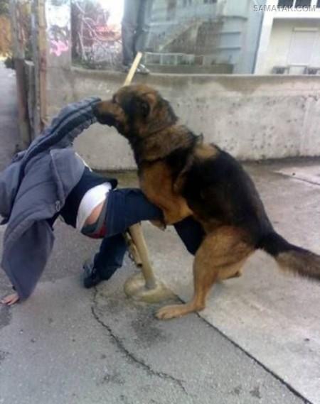 عکس های خنده دار کمک به دیگران در شرایط سخت