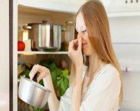 نکاتی برای تشخیص فاسد بودن غذای مانده
