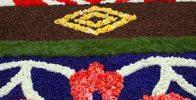 بزرگترین فرش دستباف بافته شده با گل طبیعی + تصاویر