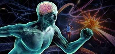 تاثیرات منفی ورزش نکردن روی مغز