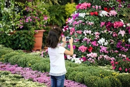تصاویر نمایشگاه گل و گیاه در بوستان گفتگو تهران