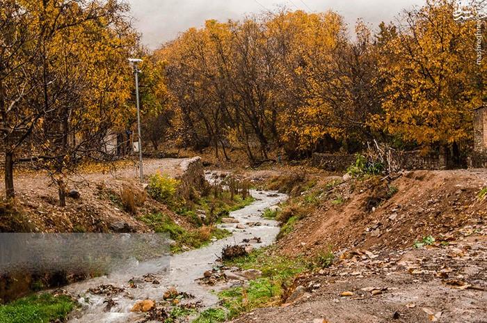 عکس پاییز مشهد