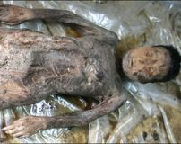 تصاویر جسد مرد عجیب که هیچ وقت پوسیده نمی شود
