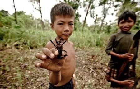 تصاویر وحشتناک خوردن رتیل گنده و سیاه در کامبوج