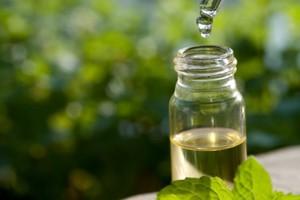 روغن درخت چای + فواید و مضرات