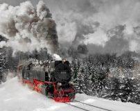 عکس های جالب از سفر با قطار در طبیعت
