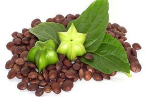 خاصیت مفید دانه های گیاهی برای بدن