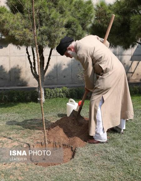نهال کاشتن مقام معظم رهبری در روز درختکاری + تصاویر