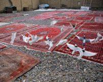گزارش تصویری از مراحل شستشوی قالی در قالیشویی