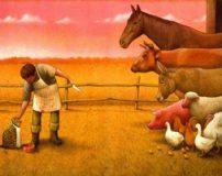 تصویر سازی های معنادار از هنرمند لهستانی