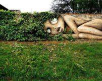 نقاشی های سه بعدی هماهنگ با گیاهان روی دیوار