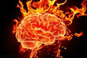 دانستنی های علمی درباره مغز انسان