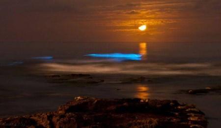 شگفت انگیزترین اتفاقات طبیعی در دنیا + تصاویر