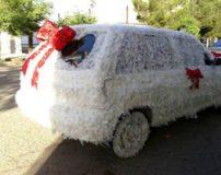 عکس های تزیین ماشین عروس با پر پرندگان