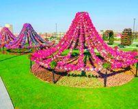 زیباترین و بزرگترین باغ گل دنیا در شهر دبی