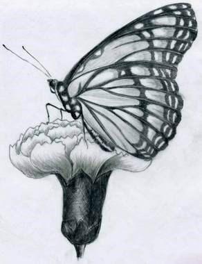 تصاویر زیباترین نقاشی های کشیده شده با مداد سیاه