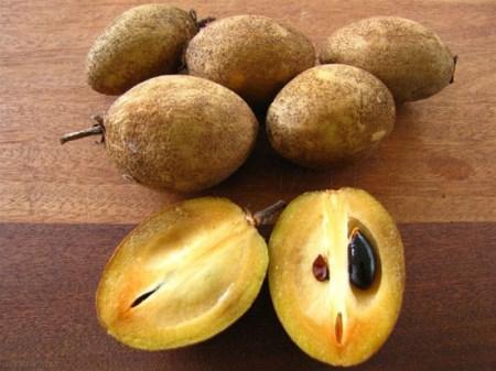 میوه های کمیاب و گران قیمت جهان