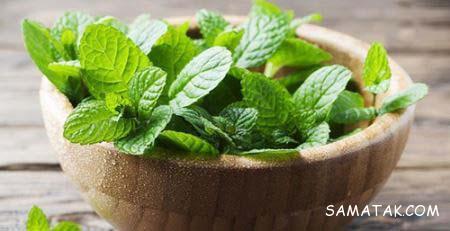 درمان سوختگی زبان با چای داغ