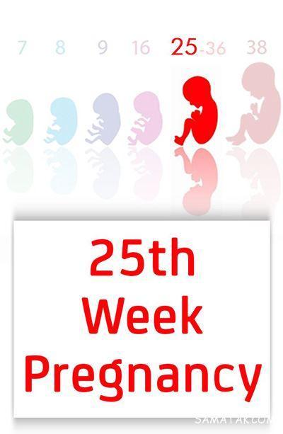 حرکات جنین در هفته 25 بارداری + تغذیه در هفته بیست و پنجم بارداری