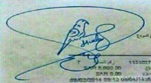 عکس زیباترین امضاء جهان ثبت شده در گینس