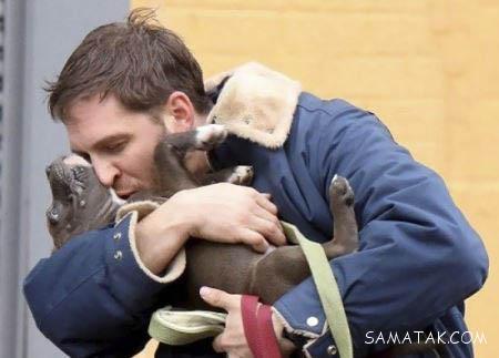 تصاویر رمانتیک تام هاردی با سگ های مختلف