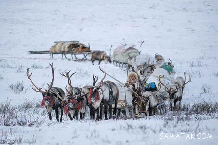 قبایلی که زندگی شگفت انگیزی در سیبری دارند + تصاویر