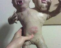 ترسناک ترین عروسک های دو سر جهان