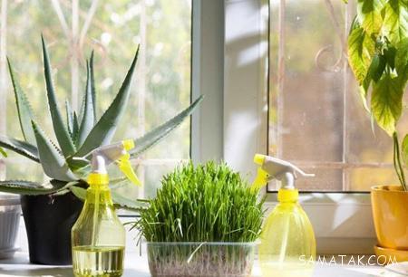 افزایش رطوبت خانه در زمستان بدون دستگاه بخور
